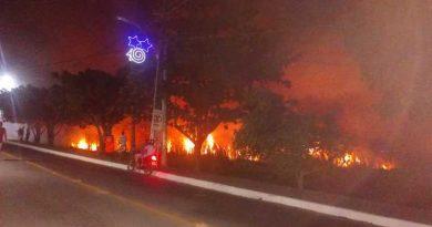 Incêndio de grandes proporções destrói vegetação em Jauá