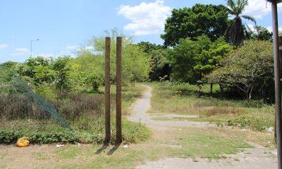 Obras de requalificação do Horto Florestal de Camaçari devem começar no segundo semestre
