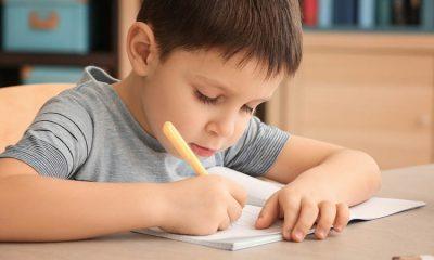 Dias d'Ávila: interdisciplinaridade irá estimular escrita através de Concurso de Redação