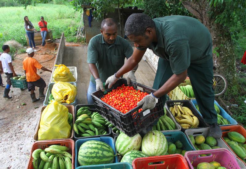1ª edição da Feira Agroecológica de Arembepe acontece neste sábado