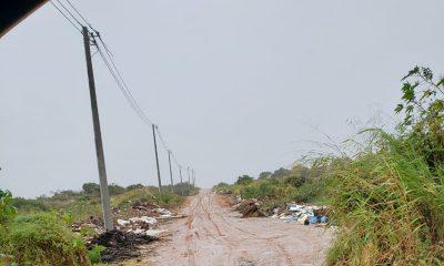 Implantação de postes pode ser manobra para invadir dunas antes da implantação do parque, por Ana Maria Mandim