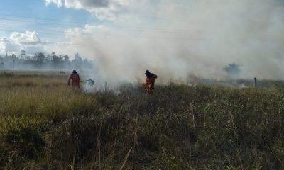 No verão, é preciso cuidados para evitar queimadas; confira orientações da Defesa Civil