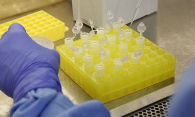 Bahia soma mais de 11 mil casos confirmados de coronavírus e 326 mortes