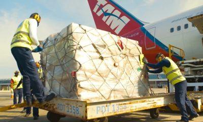 Bahia recebe 219 respiradores em uma semana
