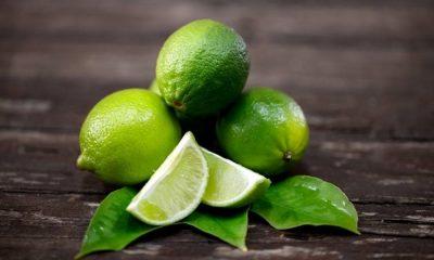 Limão fortalece sistema imunológico, combate gripes e previne envelhecimento precoce