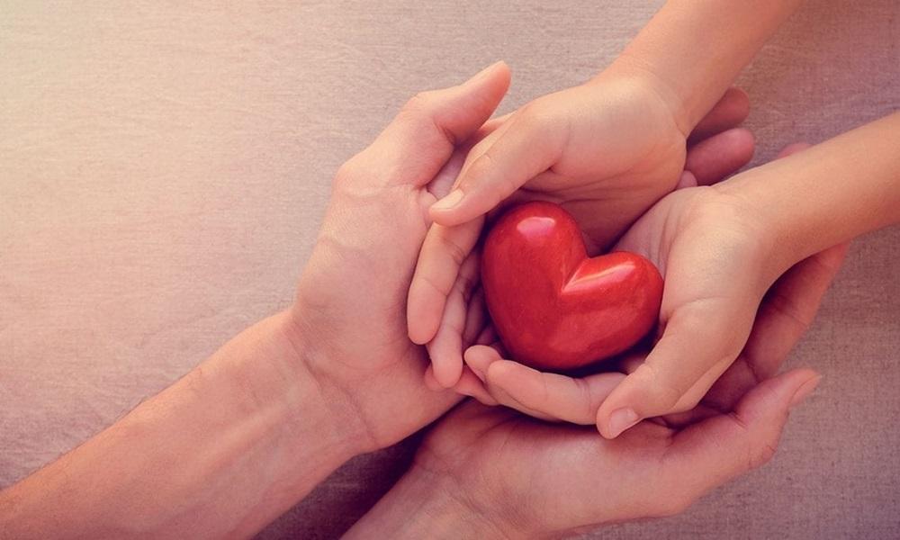 Entre janeiro e setembro, Bahia realizou 96 doações de múltiplos órgãos e 246 de córneas