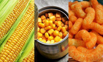 Diferenças entre alimentos in natura, processados e ultaprocessados, por Arielly Souza
