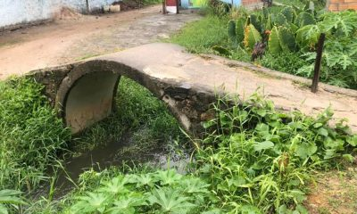 Córrego de Vila de Abrantes sofre com poluição e abandono