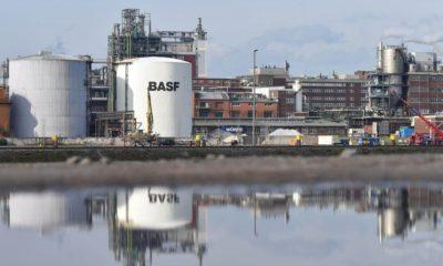 BASF está com inscrições abertas para programa de estágio com vagas para Camaçari