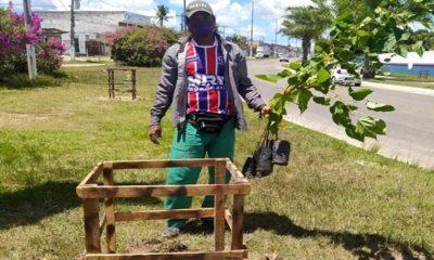 Dias d'Ávila recebe 5.500 mudas para plantio
