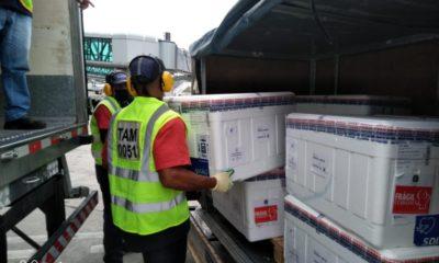 Novo lote com quase 607 mil doses de vacina contra a Covid-19 chega à Bahia