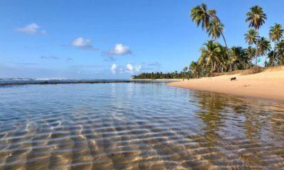 Novo decreto autoriza reabertura de praias em Mata de São João