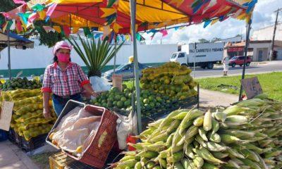 Distribuída por 12 locais, Feira do Milho segue até dia 30 em Camaçari