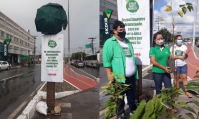 Tagner ergue placa de alerta sobre falta de arborização em Camaçari