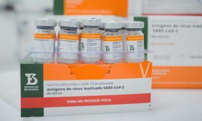 Mais de 494 mil doses de vacinas chegam à Bahia neste sábado