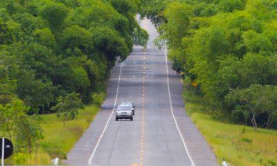 MPF e CLN firmam acordo para reparação de danos ambientais na Linha Verde