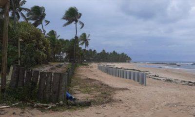 Construção de muro na praia de Busca Vida pode prejudicar desova de tartarugas, denuncia Comam