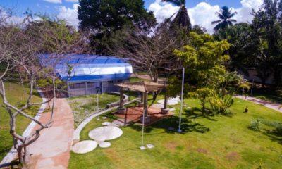 Com novo nome e requalificado, Horto Florestal Linaldo da Silva abre para visitação a partir de terça