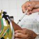 Sesau suspende vacinação contra Covid-19 nesta terça-feira em Camaçari