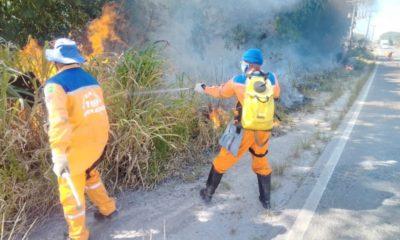 Defesa Civil alerta para riscos de incêndios florestais durante a alta estação
