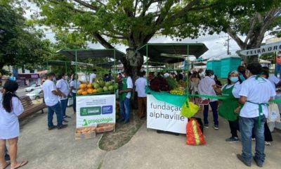 Com produtores locais, Feira Orgânica do Polo Verde ocorre todas as quartas-feiras em Camaçari