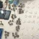 Polícia prende traficante com arma e mais de 200 porções de cocaína em Simões Filho