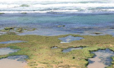Bombeiros encontram corpo de homem que havia desaparecido na praia de Ipitanga