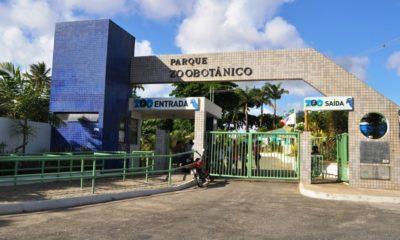 Zoológico de Salvador reabre para visitação depois de mais de um ano fechado